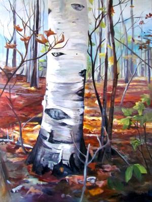Hidden in the Woods (Ottawalk)