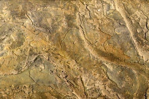 Sienna Slate Stone : Sienna slate finish fine art murals custom paintings