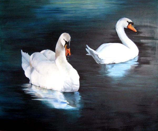Tranquility  (Swans on the Rideau River in Ottawa)