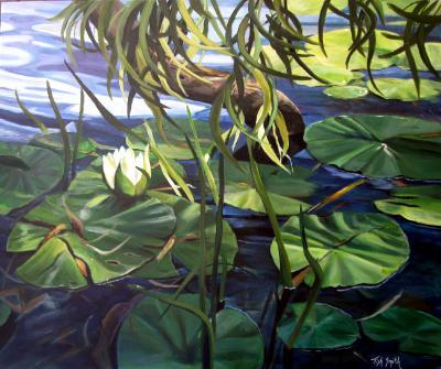 Water Lily Jubilee