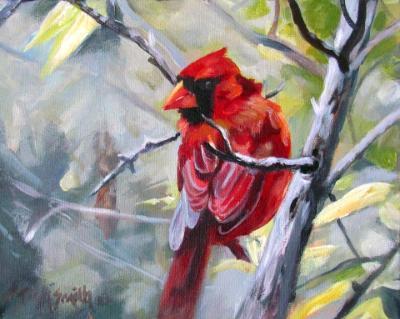Cardinal at Mud Lake