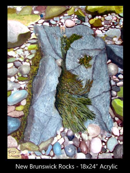 Bay of Fundy Rocks