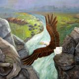 Eagles domain