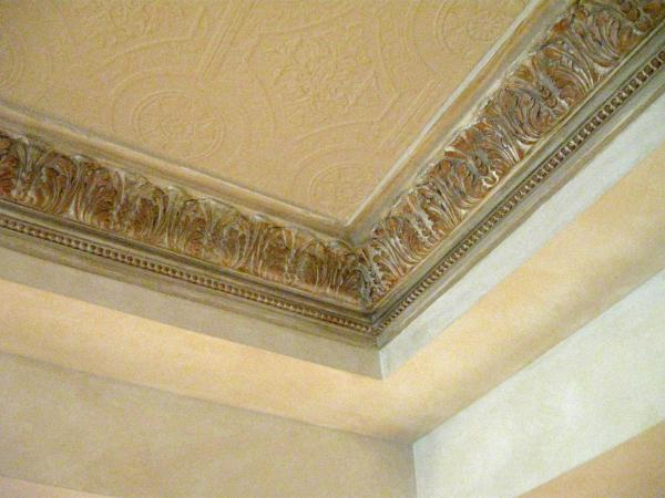 Decorative Ceiling Minto Homes